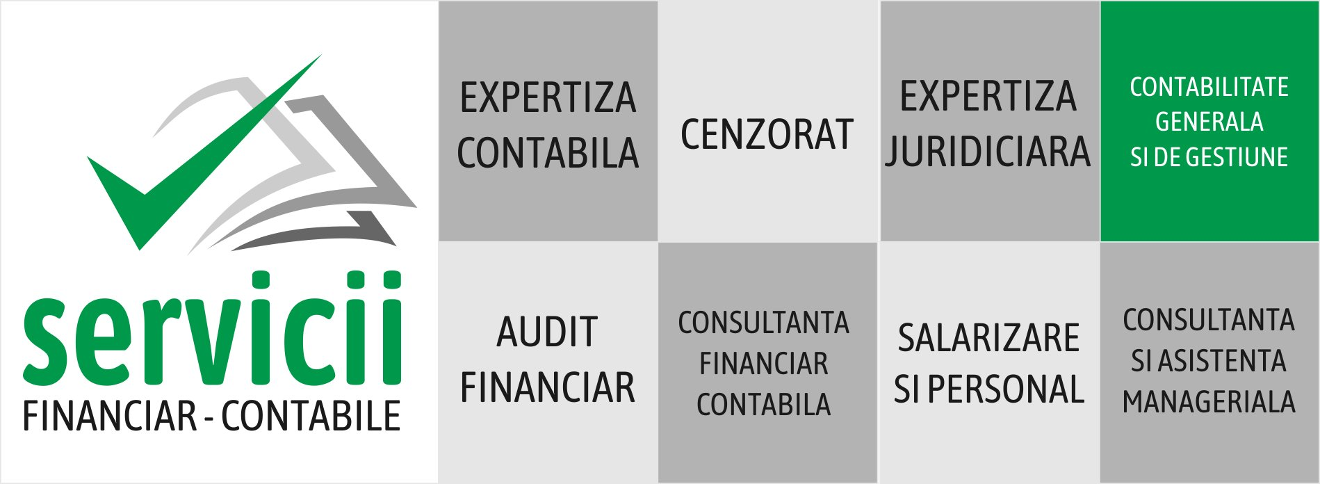 Audit Financiar Iasi Servicii Audit Financiar